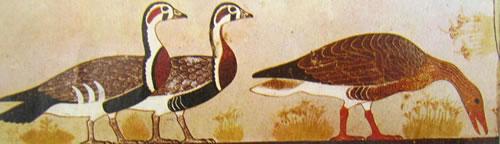 Oche, dalla Mastaba di Itet Meydum, Pittura Antico Regno, Museo Egizio del Cairo