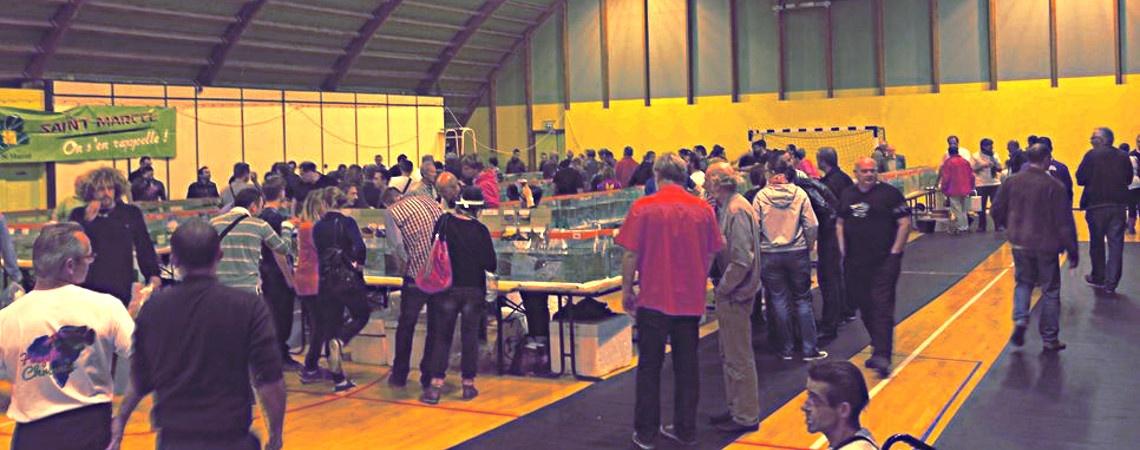 bandeau-congres-2015