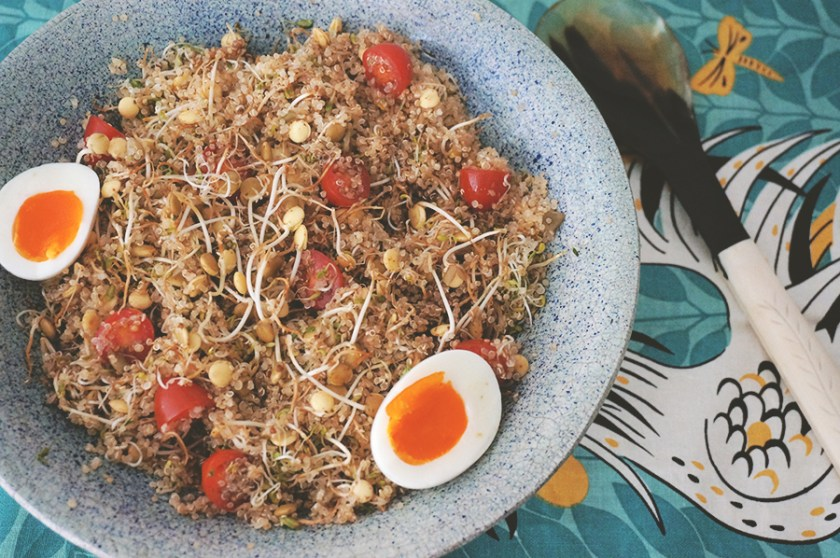 quinoa-broto-1