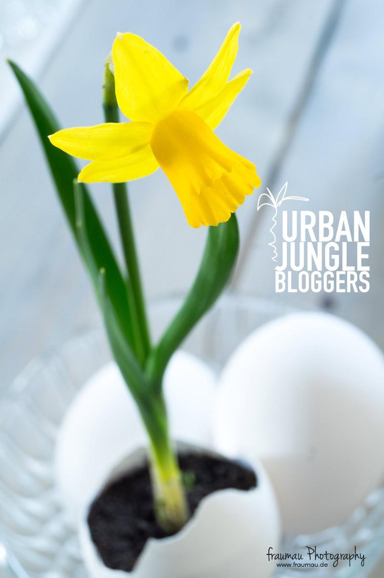 GreenSpring_UrbanJungleBloggers_fraumau_9