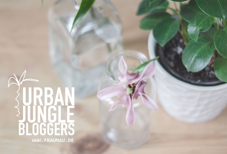 Urban Jungle Bloggers Plants &Flowers by fraumau