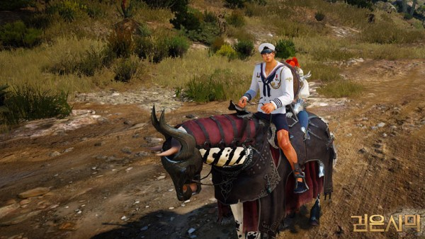 black desert 2 player mount