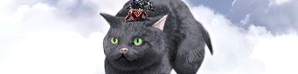 revelation online cat
