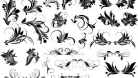 Floral Vectors, Brushes, PNG, Shapes & Pictures