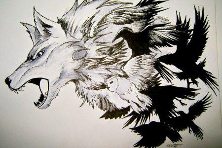 wolf crow tattoo