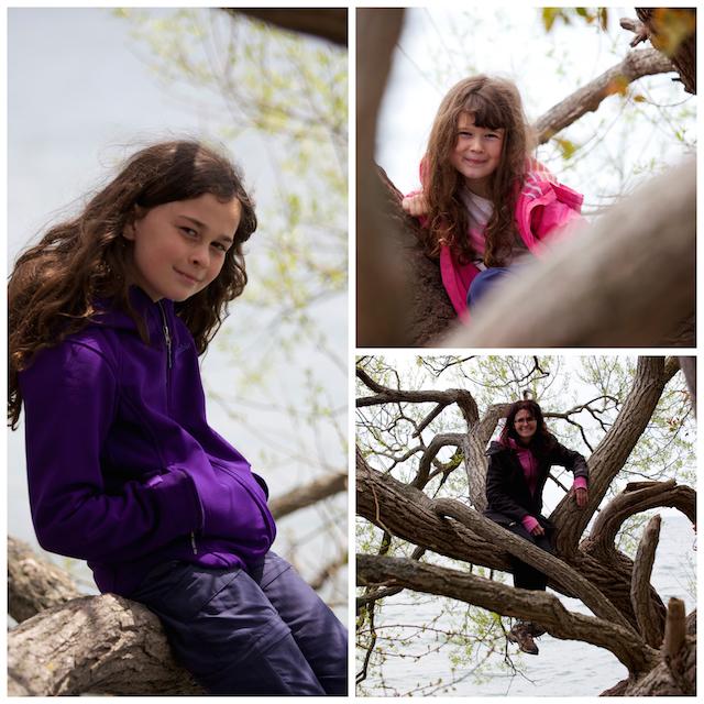 Montage filles arbre
