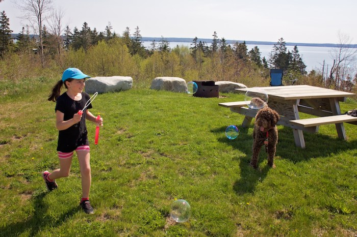 Reserver Camping Camping Car Tyrol