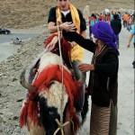 Kofke in Tibet