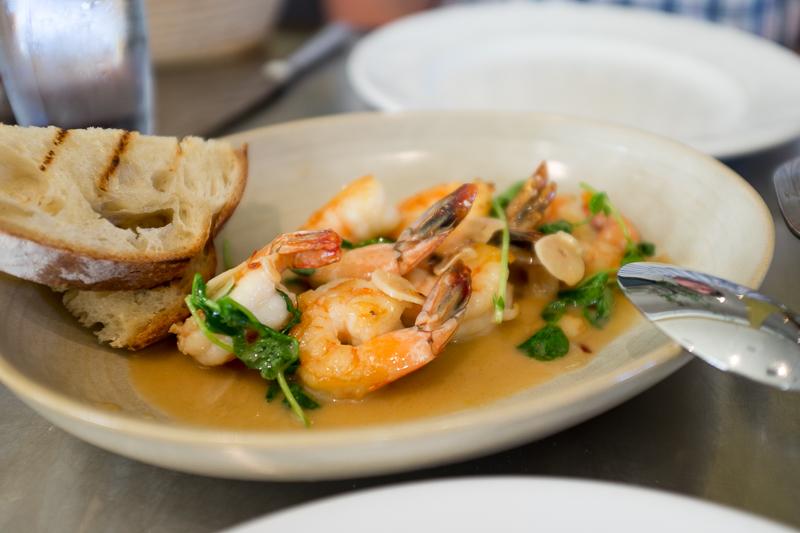 a side of Shrimp Scampi