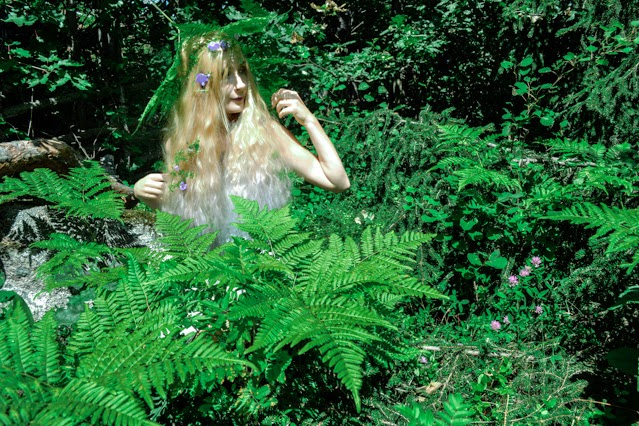Pastel haired fairy with flowers in her hair sitting among ferns