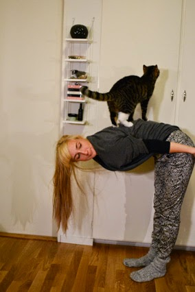 cat on my back