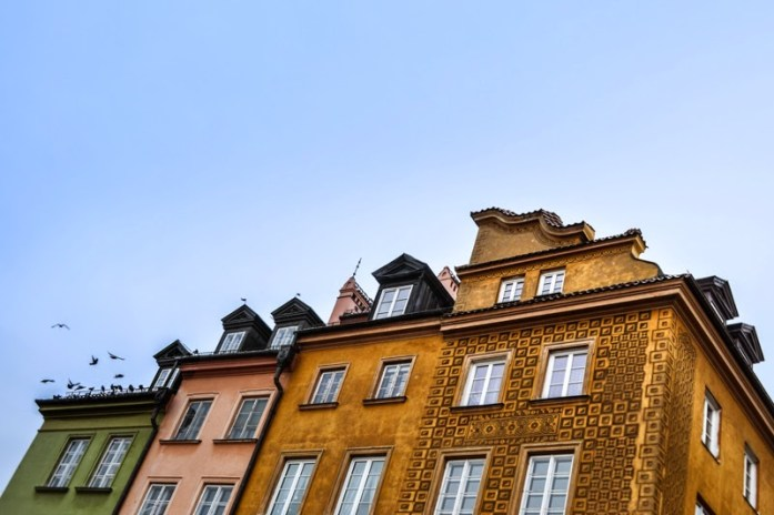 rooftops and birds