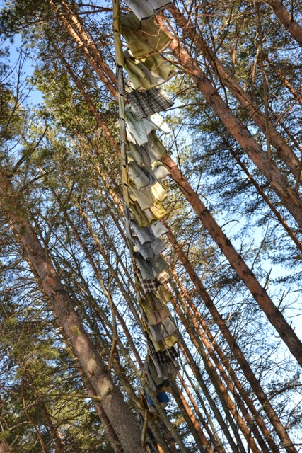 Path II by Kaarina Kaikkonen 160 jackets in trees