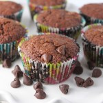 Amish Friendship Bread Double Chocolate Chip Muffins