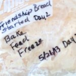 Tutorial – Reviving Frozen Amish Friendship Bread Starter