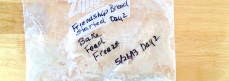 Tutorial – Reviving Frozen Amish Friendship Bread Starter