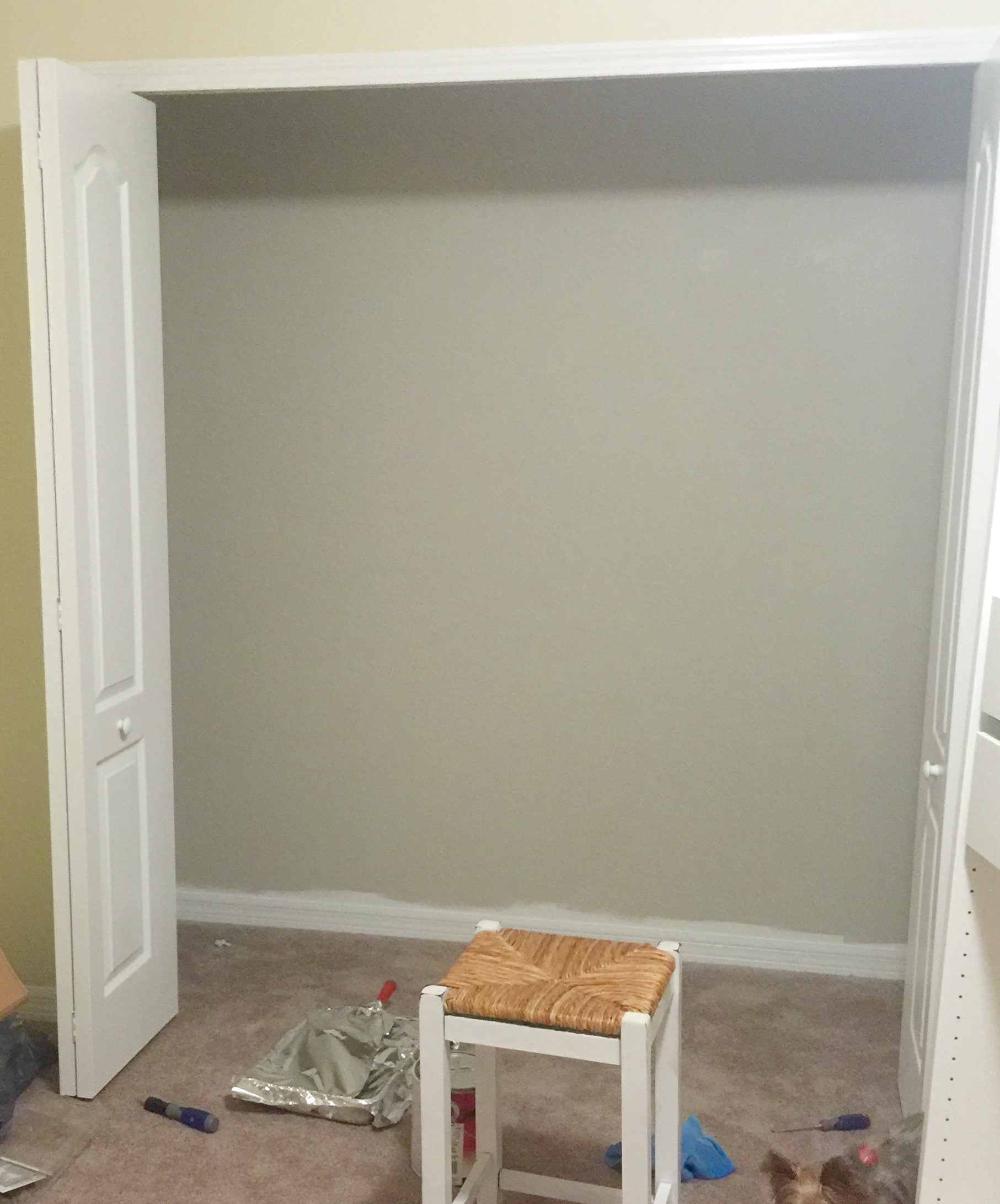 ... The Inside Of The Closet. (But Mostly Because I Wanted To Test This  Paint Color Out On A Larger Space Before Committing To Painting The Entire  Nursery.