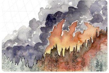 Quest'infografica mostra l'aumento degli incendi forestali dovuto all'innalzamento delle temperature dal 1880 a oggi (© Jill Pelto)