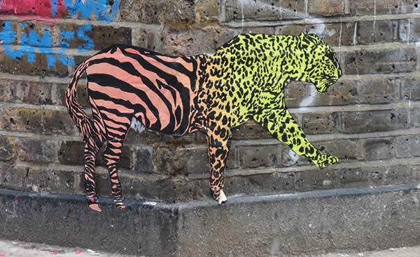Zabra y leopardo
