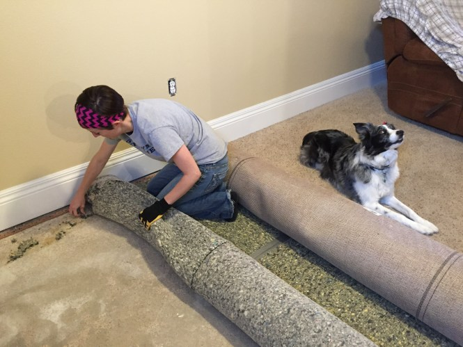Kelly rolling up carpet pad