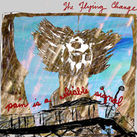 the_flying_change_pain