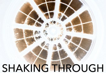 Shaking Through_various artists