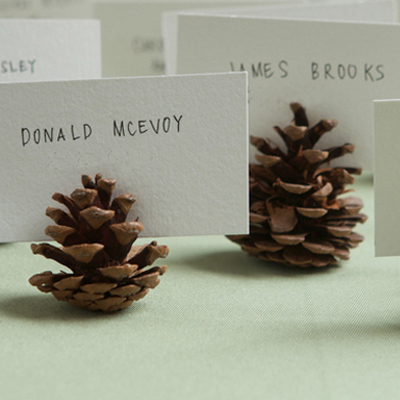 Pinecone Place Cards- Project Wedding