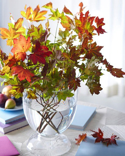 Fall Leaves From Better Homes & Gardens