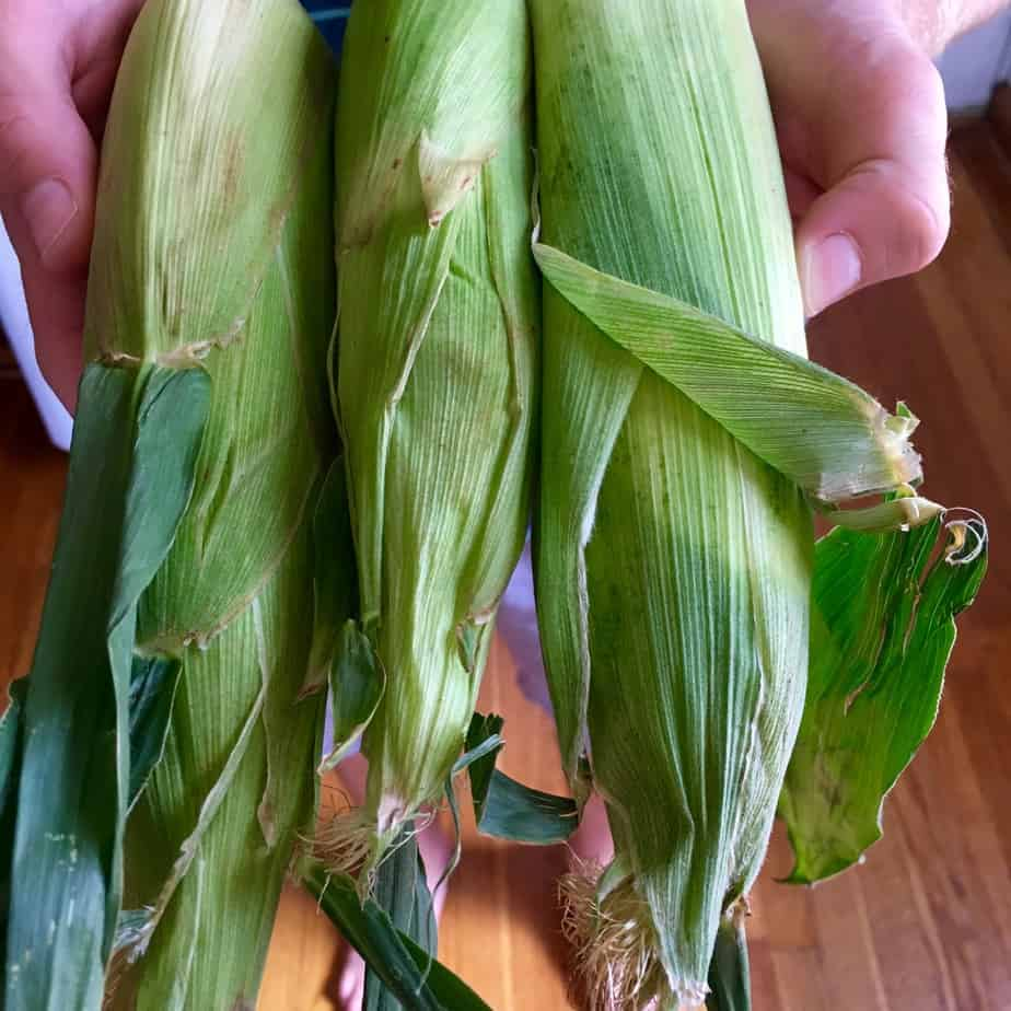 Corn on the Cob | Frugal Nutrition #hungryharvest