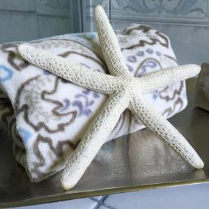decortip starfish amp seashells make fabulously frugelegant summer homedecor