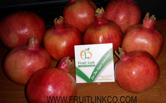 Egyptian Pomegranates early 116 by Fruit Link (15)