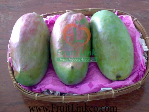 Sedika Mango -fresh- by Fruit Link