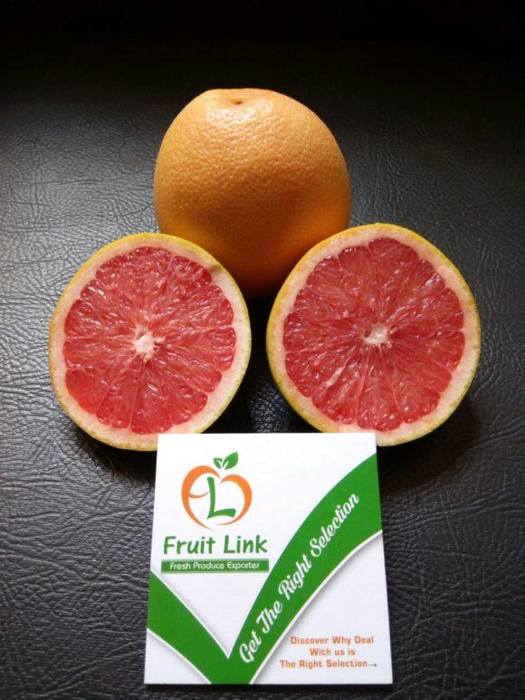 Grapefruit premium quality by FRUIT LINK