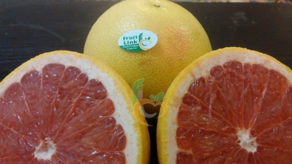 GrapeFruit from Egypt by Fruit Link