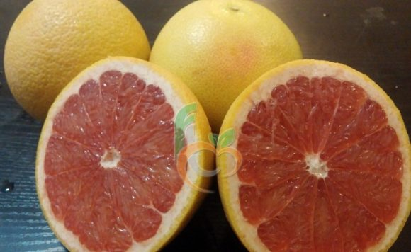 Egyptian GrapeFruit | Fruit Link