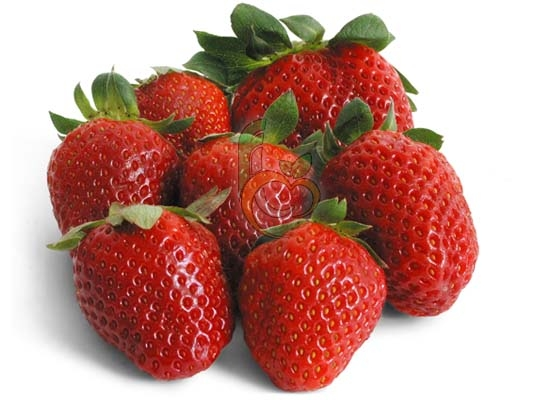 Egyptian Festival Strawberry