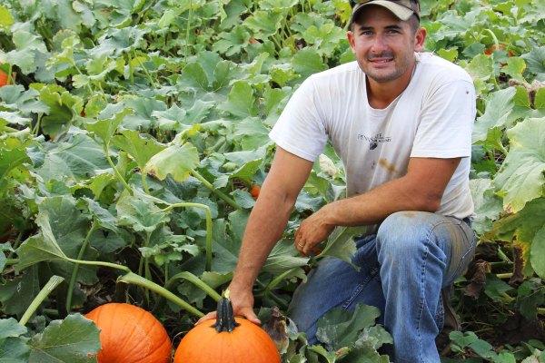 farmer with pumpkins