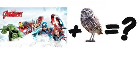 avengers_owl
