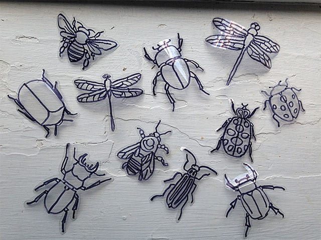 plasticbottle-insects-2