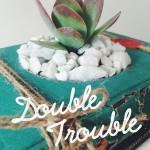 growingbooks-15
