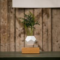 Stunning Flying Geometrical Planters