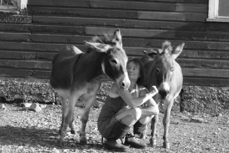 That's me with our donkey's Lulu and Fanny