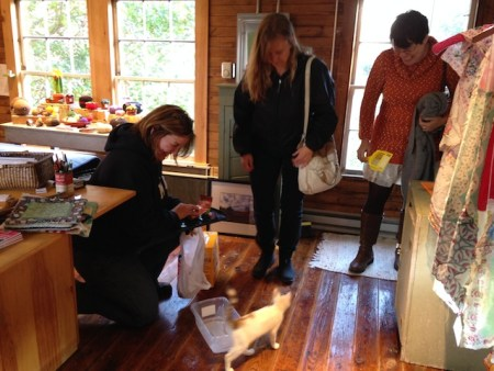 Lisa, Jennifer and Denise, enthralled, as we all were, with the kitten, now known as Miss Ali