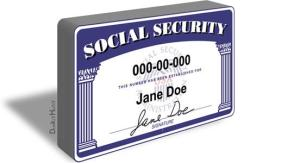 Consent-Based SSN Verification