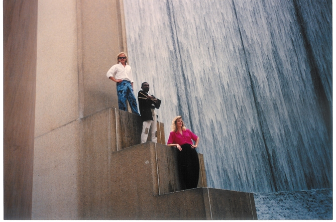 Social Insecurity Waterfall