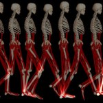 movement-disorders-skeleton-pic