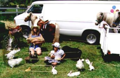 Children's petting zoo rental Los Angeles Rent Pony San Jose party ponies San Francisco