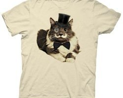 cat lady shirts, smart cat, cat in a hat, classy kitty, cats with class, shirts for cat people