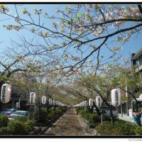 japan_trip_20141218_03