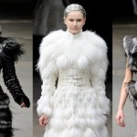 The Big Bad Wolf: From Legend to the Catwalk